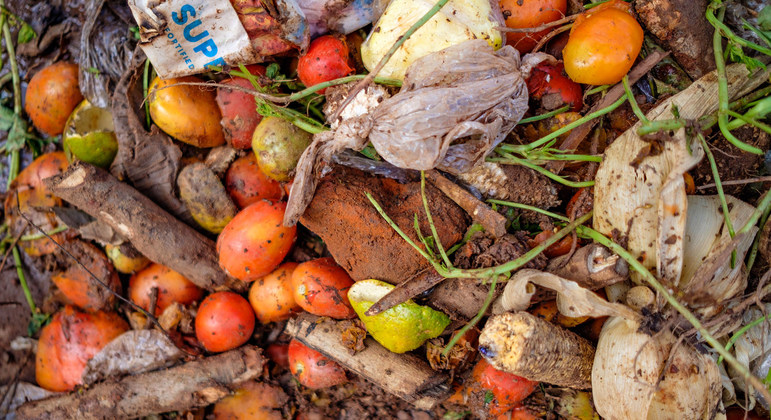 Food waste: a global problem that undermines healthy diets | UN News – SDGs
